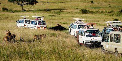 10 Masai Mara Safari 1 1