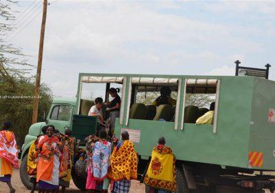 Africa Outdoors Safari 115