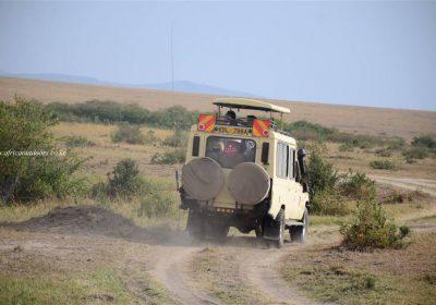 Africa Outdoors Safari 122