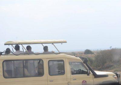 Africa Outdoors Safari 124