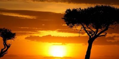 Kenyas Big 5 Walking Safari 1