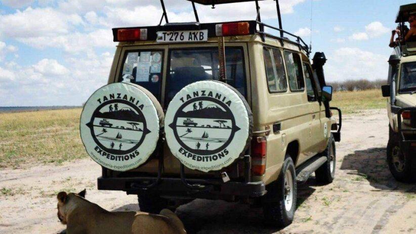 Tanzania Safaris 950x534